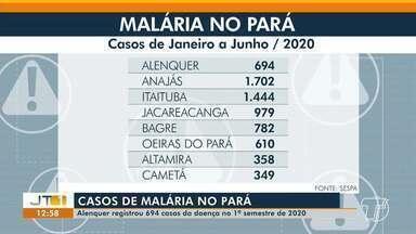 Alenquer fica entre as 7 cidades paraenses com mais registros de Malária em 2020 - Foram registrados 694 registros no município. Estado registrou 8.355 casos de janeiro a junho.