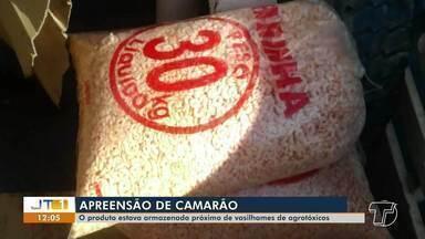 Apreendida em Santarém carga de 400 kg de camarão que estava armazenada com agrotóxicos - A guarda portuária do CDP acionou a Vigilância Sanitária e foi constatado que o produto estava acondicionado de forma inadequada.