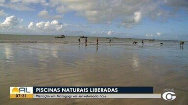 Instituto Chico Mendes autoriza a visitação pública das piscinas naturais em Alagoas - Douglas França tem mais informações.