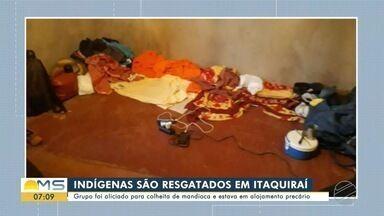 Indígenas são resgatados de situação análoga à escravidão em área de colheita de mandioca - Indígenas são resgatados de situação análoga à escravidão em área de colheita de mandioca