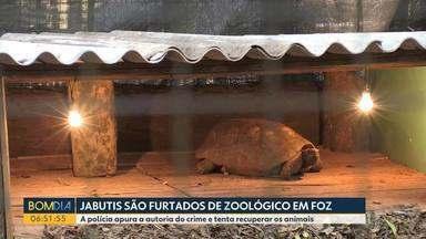 Jabutis são furtados de zoológicos em Foz do Iguaçu - A polícia apura a autoria do crime e tenta recuperar os animais.