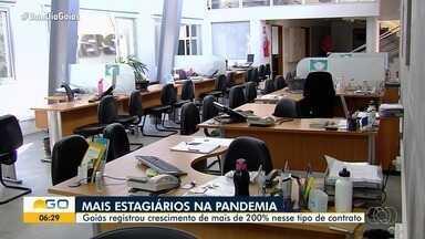 Aumenta número de contratos de estagio em Goiás - Durante a pandemia do coronavírus, os jovens estão se destacando peala adaptabilidade,