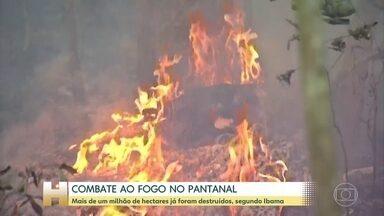 Bombeiros enfrentam dificuldades para combater o fogo no Pantanal - Um dos municípios mais atingidos é Poconé (MT). A umidade do ar pode chegar a 11% em alguns momentos do dia, o que dificulta o trabalho dos bombeiros.