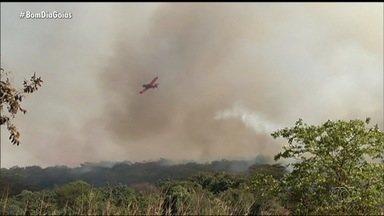 Fazendeiros criam brigada contra incêndios na zona rural de Jataí - Segundo ele, fogo tem atrapalhado muito as safras.