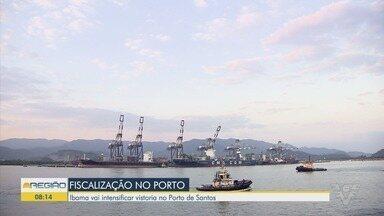 Ibama vai intensificar vistoria no Porto de Santos - Explosão no Porto de Beirute levantou a discussão sobre o armazenamento de produtos químicos.