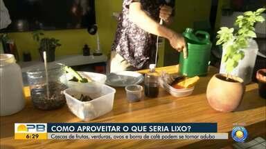 Cascas de frutas, verduras, ovos e borra de café servem de adubo de plantas - Veja como aproveitar