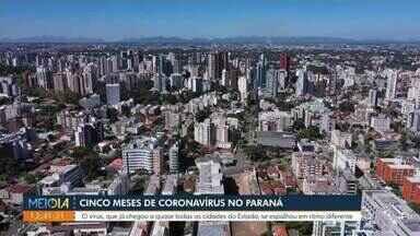 Coronavírus completa cinco meses no Paraná - O vírus, que já chegou em quase todas as cidades do Estado, se espalhou em ritmo diferente.