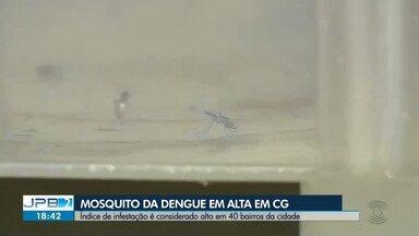 Índice de infestação de dengue é considerado alto em 40 bairros de Campina Grande - Estratégia usada pela Secretaria Municipal de Saúde busca combater os casos de dengue na cidade.