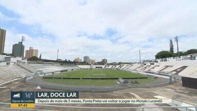 Ponte Preta volta a jogar no Moisés Lucarelli após cerca de cinco meses - Retorno acontece em jogo importante contra o Vitória. Na partida, Macaca busca pelo primeiro resultado positivo no Campeonato Paulista.