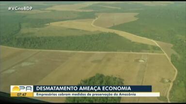 Empresários cobram medidas de prevenção da Amazônia - Desmatamento ameaça economia.