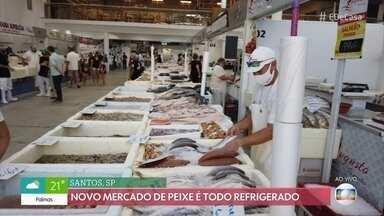 Mercado de Peixe todo refrigerado é inaugurado em Santos, SP - Pescadores acordam às duas horas da manhã para trabalhar