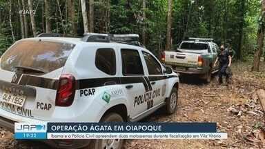 Operação Ágata: dois são presos por extração ilegal de madeira em área de preservação - Agentes do Ibama e Polícia Civil flagraram dois homens na prática indevida nesta segunda-feira (17), em Oiapoque. Motosserras também foram apreendidas.