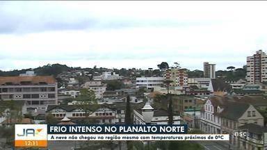 Termômetros chegam próximo de 0ºC no Planalto Norte de SC, mas região não tem neve - Termômetros chegam próximo de 0ºC no Planalto Norte de SC, mas região não tem neve