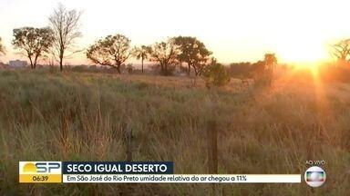 Mesma secura de deserto em Rio Preto - Umidade relativa do ar chegou a 11%.