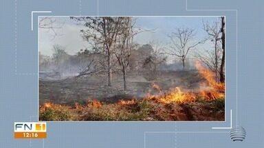 Incêndio destrói Área de Preservação Permanente em Presidente Epitácio - Fogo atingiu local próximo ao Córrego do Veado.