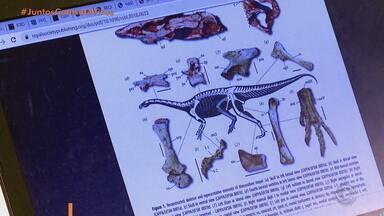 Artigo da UFSM publicado em jornal britânico mostra nova teoria da origem de dinossauros - Cientistas sugerem indícios que podem preencher lacuna na presença de ornitísquios no período Triássico. Estudo foi publicado nesta quarta (26) no periódico Biology Letters.
