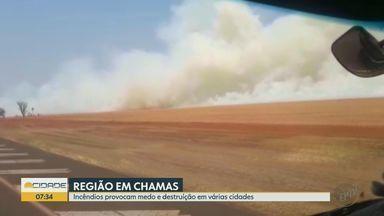Incêndios provocam destruição em cidades da região de Ribeirão Preto, SP - Áreas de preservação e plantações foram queimadas no domingo (13).