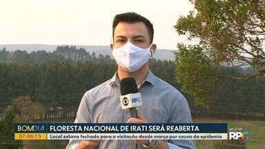 Floresta Nacional de Irati reabre nessa semana - A visitação estava suspensa desde março por causa da pandemia.