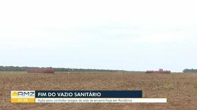 Vazio Sanitário chega ao fim em Rondônia - Ação para controlar pragas da soja se encerra hoje.