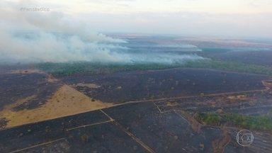 Chove em algumas áreas atingidas pelas queimadas - Choveu de sábado (19) para domingo (20) em algumas regiões atingidas pelas queimadas, mas ainda não o suficiente para trazer tranquilidade.
