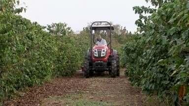 Setor de máquinas agrícolas aproveita ano positivo do agronegócio - O ano de 2020 deve fechar com saldo positivo no agronegócio em todo o país. Com mais lucro, muitos produtores estão aproveitando para investir em tecnologia.