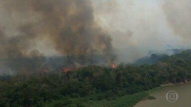 Brasil perde em 18 anos área equivalente a 2 vezes o estado de SP em vegetação nativa - São quase 500 mil quilômetros quadrados de destruição em todos os biomas, mostram dados do IBGE. Os números são piores na Amazônia e no Cerrado.