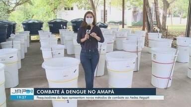Iepa aposta em armadilhas e hormônios para ações de combate à dengue no Amapá - Técnicas foram apresentadas a agentes de endemias dos municípios.