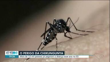 ES é o segundo estado do país com mais casos de chikungunya - Estado já registrou mais de 13 mil casos da doença só de janeiro a agosto deste ano. Número é quase sete vezes maior do que o registrado no mesmo período do ano passado.