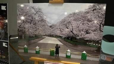 Pandemia inspira duas exposições em Tóquio - Uma destaca o que a imprensa mundial publicou sobre o coronavírus e outra reúne textos de espetáculos que não chegaram a ser montados.