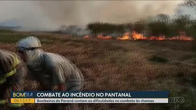 Bombeiros do Paraná contam as dificuldades no combate às chamas no Pantanal - Os bombeiros do Paraná já estão no MS há duas semanas