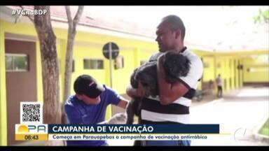 Campanha de vacinação antirrábica inicia em Parauapebas, no Pará - Campanha de vacinação antirrábica inicia em Parauapebas, no Pará