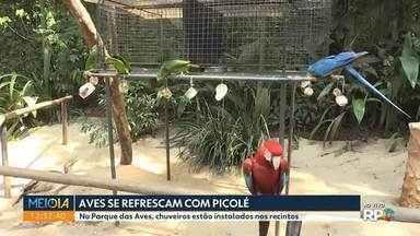 Chuveiros foram instalados no Parque das Aves pra aliciar o calorão - Além disso os animais ganham picolé de frutas. Foz do Iguaçu registrou 35° hoje(01) perto das 12h