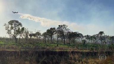 Cidades agrícolas de Goiás criaram brigadas aéreas para combater os focos de incêndio - Aviões são os mesmos usados para pulverizar as lavouras.