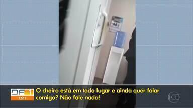 Procuradores acusam embaixada da Liga Árabe de assédio moral contra funcionários - Segundo MPT, diplomatas não têm imunidade neste sentido, e embaixada deve respeitar legislação trabalhista brasileira.