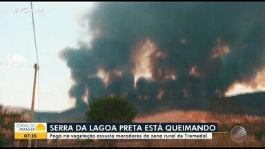 Incêndios ambientais atingem cidades das regiões norte e sudoeste da Bahia - Veja como está a situação em Tremedal e Queimadas, além das informações sobre os focos de incêndio em todo o estado.