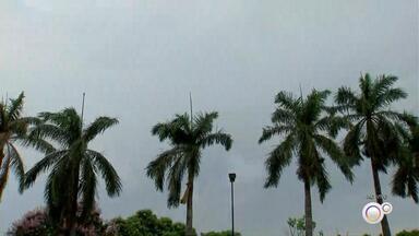 Cidades do noroeste paulista têm chuva durante a madrugada desta quinta-feira - Cidades do noroeste paulista têm chuva durante a madrugada desta quinta-feira (15).