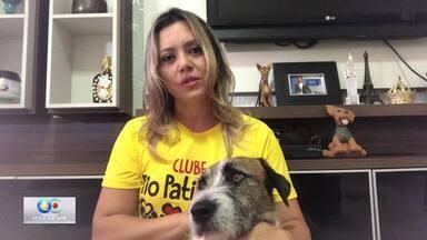Waléria Assunção e o amor por Mustafá - A repórter e apresentadora da Rede Paraíba de Comunicação fala sobre o amor pelos bichos e o trabalho do Clube Tio Patinhas.