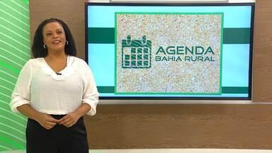 Agenda rural: confira eventos que acontecem no campo, na Bahia; confira - Na próxima quarta-feira (16), tem palestra sobre reprodução do gado leiteiro. Veja este e outros eventos.