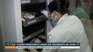 Plasma sanguíneo é usado no tratamento da Covid-19 - Doações podem ser feitas no Hemocentro de Maringá.
