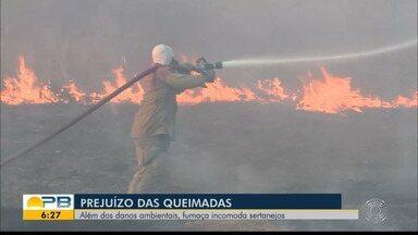 Moradores de Sousa se incomodam e se preocupam com fumaça causada pelos incêndios - Danos ambientais e aos moradores estão sendo causados por causa de queimadas em vegetação