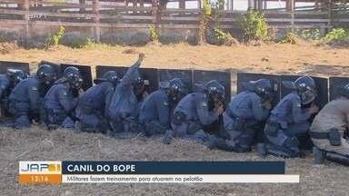 Policiais militares fazem treinamento para atuarem em pelotão pelo Canil do Bope, no Amapá - Policiais militares fazem treinamento para atuarem em pelotão pelo Canil do Bope, no Amapá