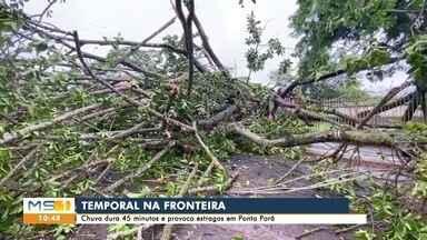 Segunda começa com chuva e estragos em Campo Grande e interior - Prefeitura de Dourados decretou situação de emergência por conta de temporal