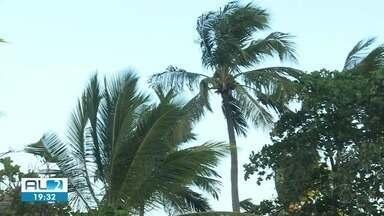 Ventos se intensificam na faixa litorânea de Alagoas - Fenômeno deve durar até novembro.