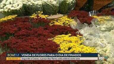 Procura por flores aumenta na Ceasa - A proximidade do dia de Finados gera aumento nas vendas.