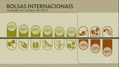 Confira a cotação dos principais produtos agrícolas em outubro - Valores são de mercado futuro