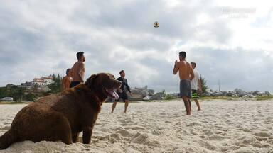 Amigos, Diversão e Emoção em Saquarema - Filipe vai para Saquarema para disputar o Circuito Mundial. Ele encontra seus amigos e surfa ondas incríveis.