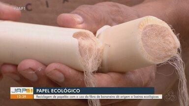Projeto recicla fibra de bananeira para produção de lixeiras ecológicas em Macapá - Projeto recicla fibra de bananeira para produção de lixeiras ecológicas em Macapá