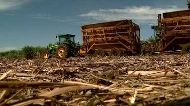 Safra da cana termina em SP com expansão na produção de açúcar - Aumento foi de 44% em relação ao ano passado, puxado pela alta do preço do açúcar no mercado internacional, e por colheitas menores na Índia e na Tailândia em função da seca.