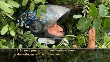 Motoqueiro escapa do pior - O rapaz ficou preso em uma árvore que caiu em SP