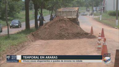 Temporal em Araras causa alagamentos e quedas de árvores - As equipes do Corpo de Bombeiros, Defesa Civil, Guarda Civil Municipal e Polícia Militar foram chamadas para atender as ocorrências.